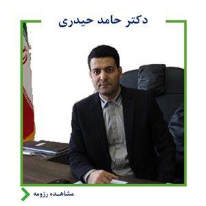 حامد حیدری,اندیشه معین,بانک آینده,ایرانمال
