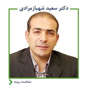 سعید شهباز مرادی,اندیشه معین,بانک آینده,ایرانمال