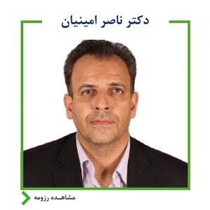 ناصر امینیان,اندیشه معین,بانک آینده,ایرانمال