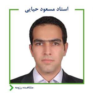 مسعود حیایی