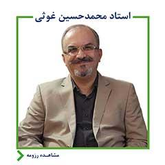 استاد محمد حسین غوثی